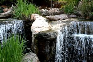 Safari Garden Centre - Waterfall - The Willows