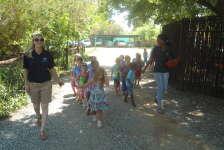 Silver Stars - Nursery School - Shere