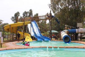 Cedar Park Summer Activities For Kids