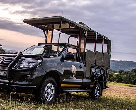 Kruger Safari UK
