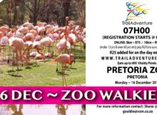 Trailadventure-Zoo-Walkies-Pretoria-Zoo-Gauteng